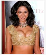 Mallika Sherawat Spicy Photos
